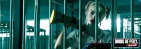 *** Birds of Prey: The Emancipation of Harley Quinn ***